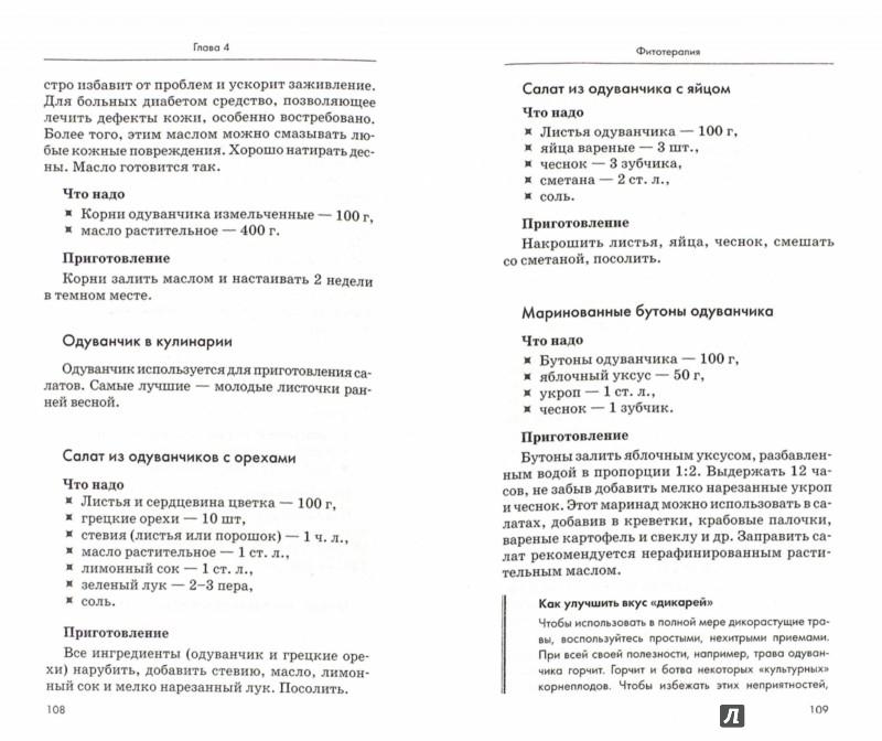 Иллюстрация 1 из 16 для Диабет. Полный курс лечения. Авторская методика - Роза Волкова | Лабиринт - книги. Источник: Лабиринт