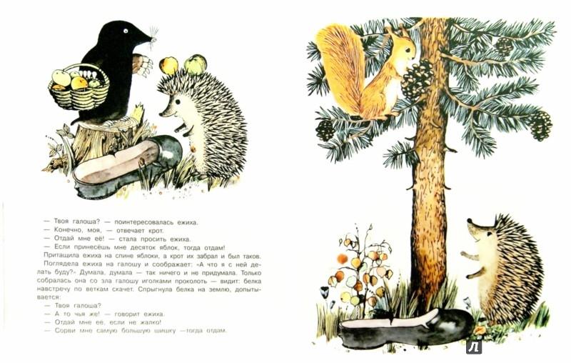 Иллюстрация 1 из 50 для Галоша - Михаил Пляцковский | Лабиринт - книги. Источник: Лабиринт