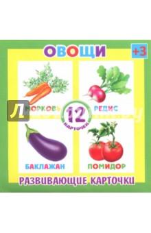 Развивающие карточки Овощи (12 штук) (37271-50)