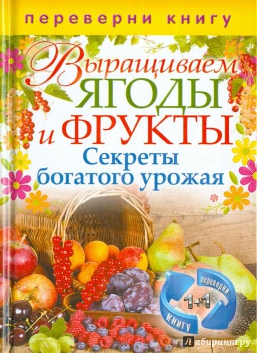 Иллюстрация 1 из 2 для Выращиваем овощи. Секреты сверхурожая | Лабиринт - книги. Источник: Лабиринт