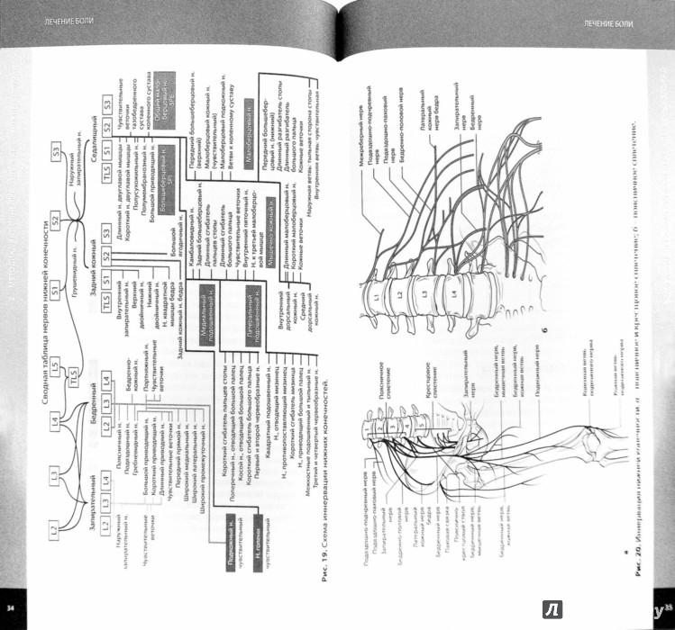 Иллюстрация 1 из 6 для Лечение боли. Методы локального воздействия - Загорулько, Медведева | Лабиринт - книги. Источник: Лабиринт