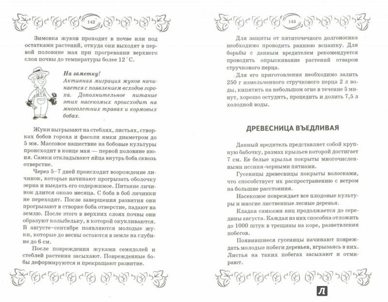 Иллюстрация 1 из 6 для Болезни и вредители сада и огорода. Все секреты успешной защиты урожая - С. Калюжный | Лабиринт - книги. Источник: Лабиринт