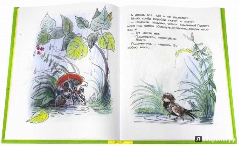 Иллюстрация 1 из 53 для Сказки и картинки - Владимир Сутеев | Лабиринт - книги. Источник: Лабиринт