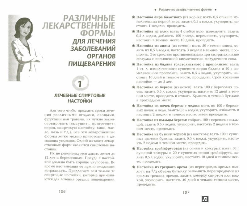 Иллюстрация 1 из 6 для Лечим желудок и кишечник - Галина Сергеева | Лабиринт - книги. Источник: Лабиринт