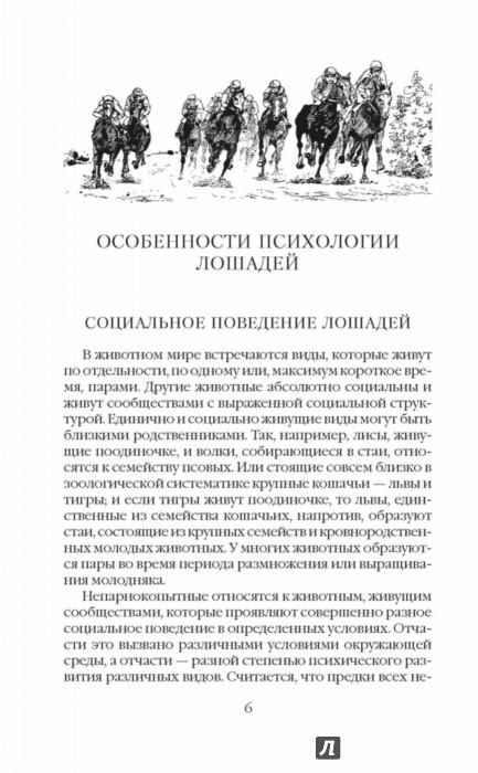 Иллюстрация 1 из 8 для Все о лошадях. Полное руководство по правильному уходу - Игорь Скрипник | Лабиринт - книги. Источник: Лабиринт