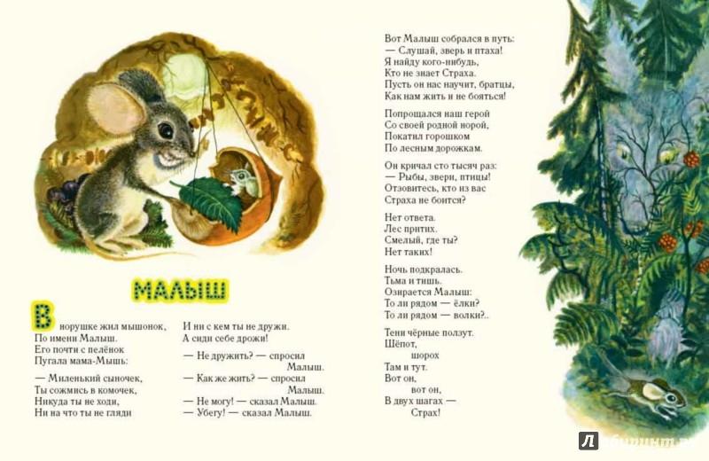 Иллюстрация 3 из 111 для Сказка о страхе - Екатерина Серова | Лабиринт - книги. Источник: Лабиринт