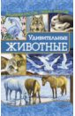 Наниашвили Ирина Николаевна Удивительные животные