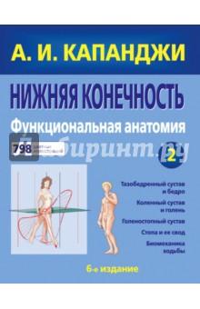 Нижняя конечность. Функциональная анатомия книги эксмо верхняя конечность физиология суставов