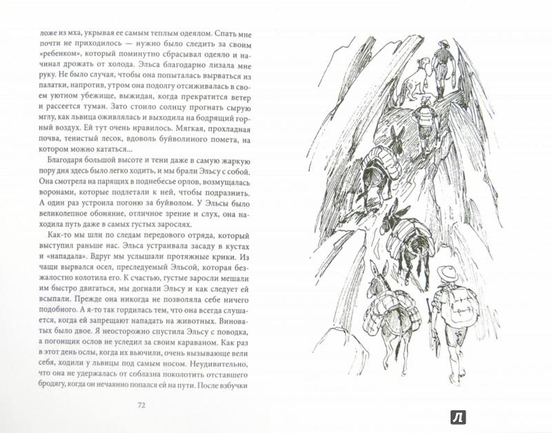 Иллюстрация 1 из 41 для Рожденная свободной - Джой Адамсон | Лабиринт - книги. Источник: Лабиринт