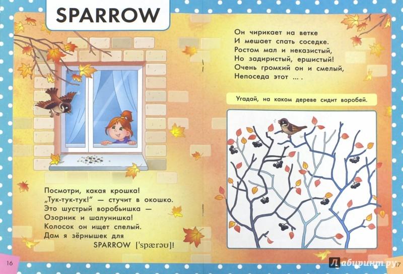 Иллюстрация 1 из 26 для Стихи и загадки о птицах. Пособие для детей 4-6 лет. ФГОС ДО - Юлия Курбанова | Лабиринт - книги. Источник: Лабиринт