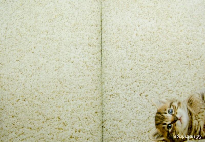 """Иллюстрация 1 из 10 для Кто сказал """"мяу""""? А5   Лабиринт - книги. Источник: Лабиринт"""