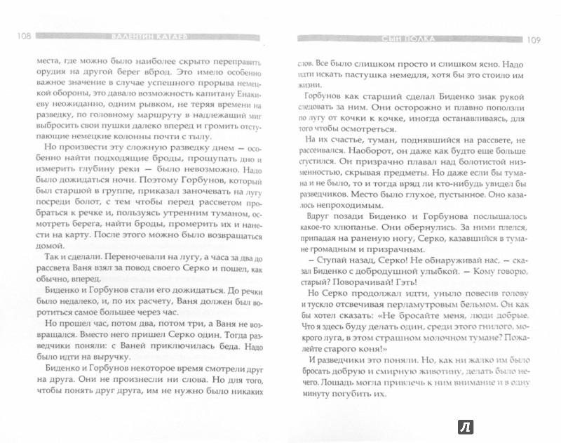 Иллюстрация 1 из 11 для Сын полка - Валентин Катаев | Лабиринт - книги. Источник: Лабиринт
