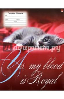 """Тетрадь школьная """"Котята. Щенята"""" (24 листа, А5, линейка, в ассортименте) (7-24-251/2)"""