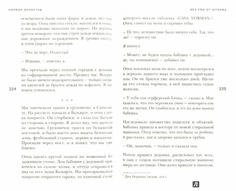 Иллюстрация 1 из 4 для Без ума от шторма - Норман Оллестад | Лабиринт - книги. Источник: Лабиринт