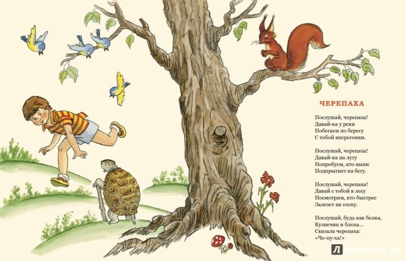 Иллюстрация 1 из 36 для Послушай, черепаха! - Михаил Кудинов | Лабиринт - книги. Источник: Лабиринт