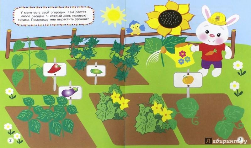 Иллюстрация 1 из 7 для Овощи, фрукты и ягоды | Лабиринт - книги. Источник: Лабиринт