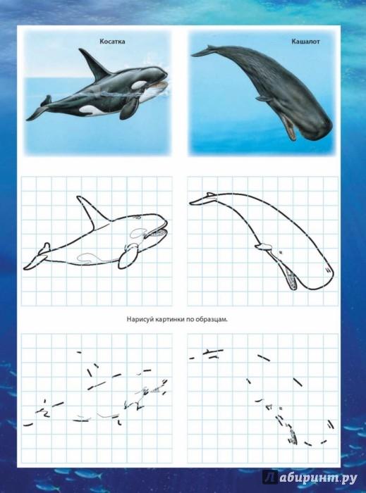 Иллюстрация 1 из 3 для Обитатели морей | Лабиринт - книги. Источник: Лабиринт