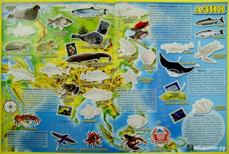 Иллюстрация 1 из 15 для Обитатели рек, морей и океанов. Атлас мира с наклейками | Лабиринт - книги. Источник: Лабиринт