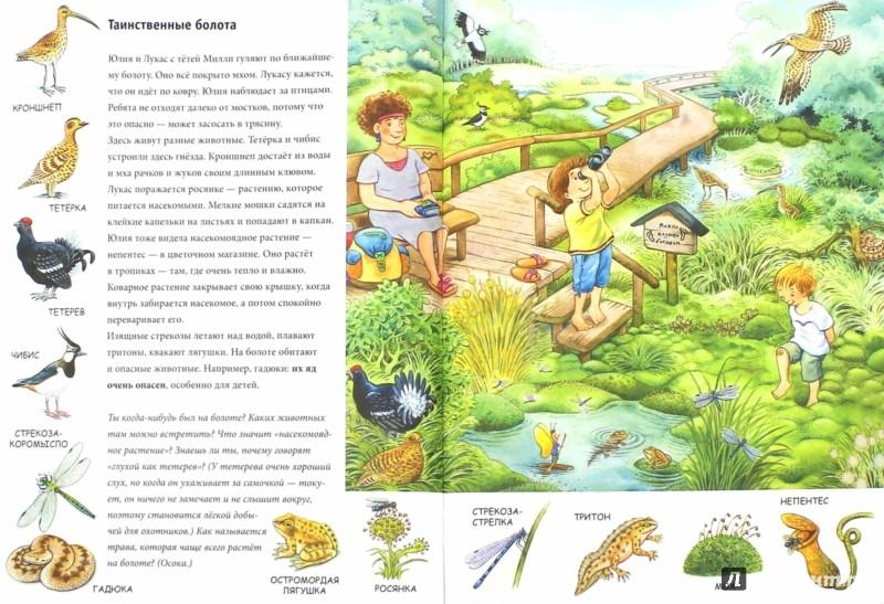 Иллюстрация 1 из 20 для Лето. Находилки-развивалки. ФГОС - Бьянка Минте-Кениг | Лабиринт - книги. Источник: Лабиринт
