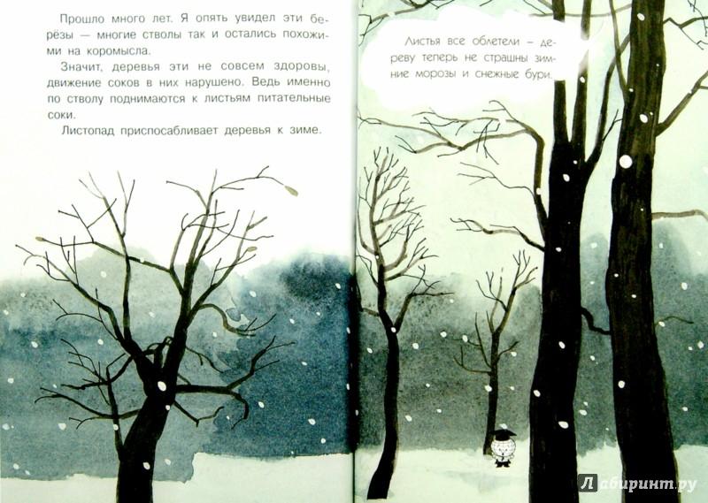 Иллюстрация 1 из 50 для Почему осенью листопад? - Георгий Граубин | Лабиринт - книги. Источник: Лабиринт