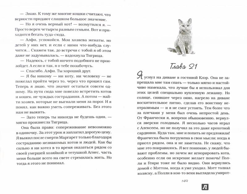 Иллюстрация 1 из 16 для Кот по имени Алфи - Рейчел Уэллс | Лабиринт - книги. Источник: Лабиринт