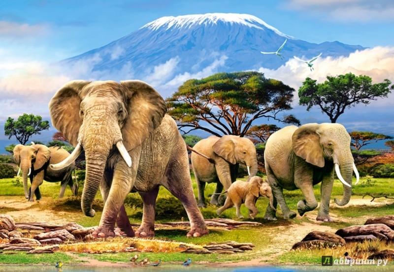 """Иллюстрация 1 из 5 для Puzzle-1000 """"Слоны"""" (C-103188)   Лабиринт - игрушки. Источник: Лабиринт"""