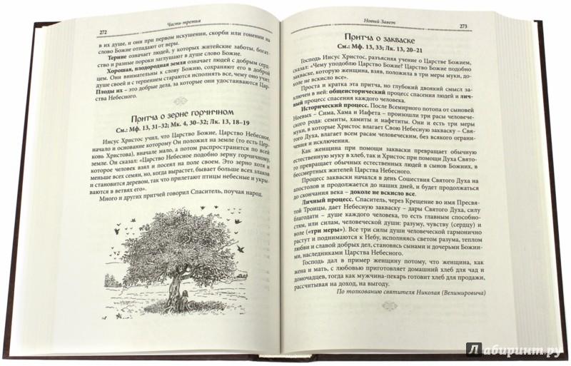 Иллюстрация 1 из 41 для Закон Божий - Серафим Протоиерей | Лабиринт - книги. Источник: Лабиринт