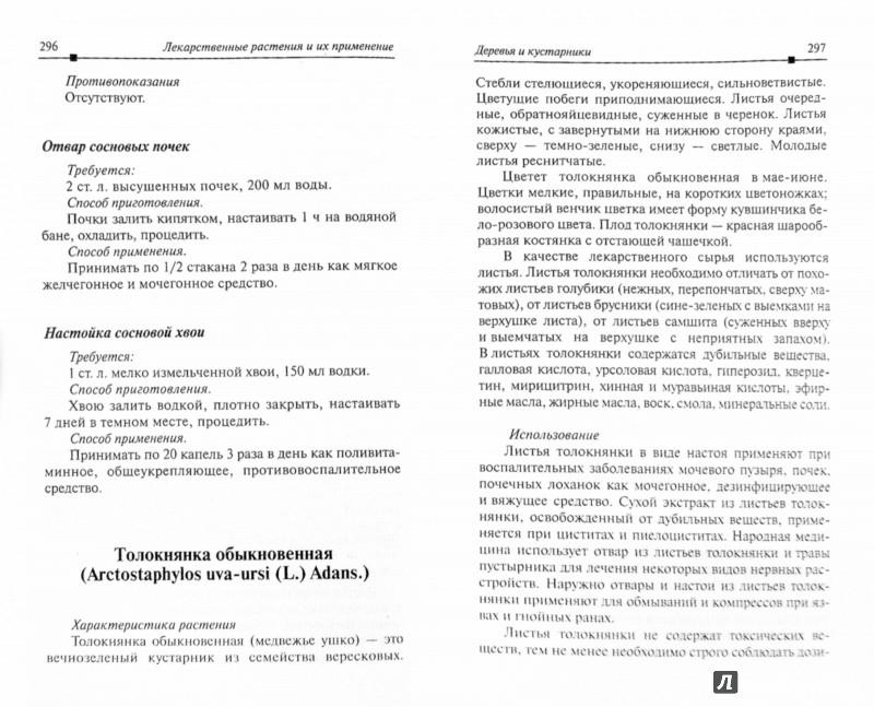 Иллюстрация 1 из 40 для Травник. Описание 300 лекарственных растений и способы их применения от 100 самых распространенных | Лабиринт - книги. Источник: Лабиринт