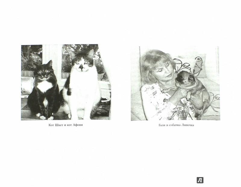 Иллюстрация 1 из 13 для Тостуемый пьет до дна - Георгий Данелия | Лабиринт - книги. Источник: Лабиринт