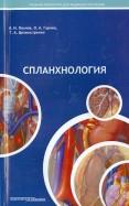 Спланхнология. Лекции по анатомии человека