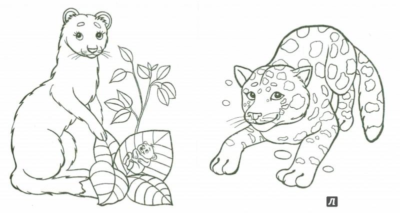 Иллюстрация 1 из 18 для Малыши | Лабиринт - книги. Источник: Лабиринт