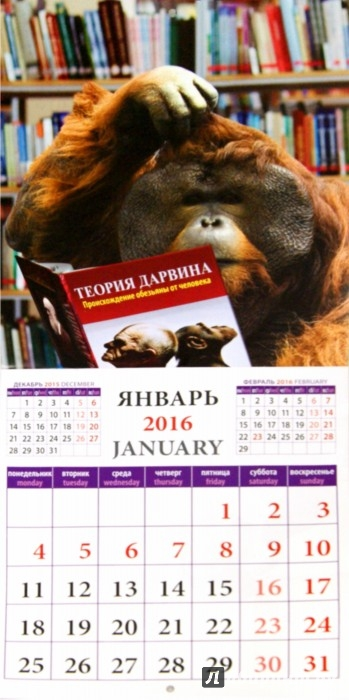 Иллюстрация 1 из 2 для Календарь на 2016 Год обезьяны с улыбкой (45603) | Лабиринт - сувениры. Источник: Лабиринт