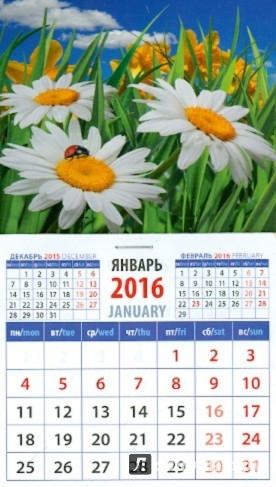 Иллюстрация 1 из 3 для Календарь магнитный 2016. Ромашки (20625) | Лабиринт - сувениры. Источник: Лабиринт