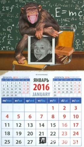 Иллюстрация 1 из 3 для Календарь на магните 2016. Год обезьяны. Шимпанзе  с портретом Эйнштейна (20638) | Лабиринт - сувениры. Источник: Лабиринт