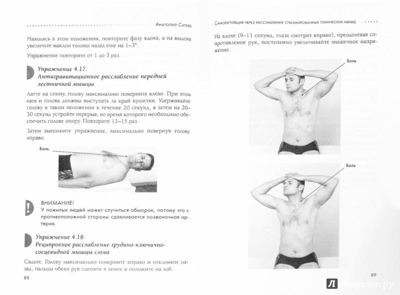 Иллюстрация 1 из 7 для Спина без боли. Как снять болевые ощущения в мышцах и суставах - Анатолий Ситель | Лабиринт - книги. Источник: Лабиринт