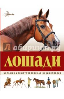 Большая иллюстрированная энциклопедия. Лошади травина и в лошади самая первая энциклопедия