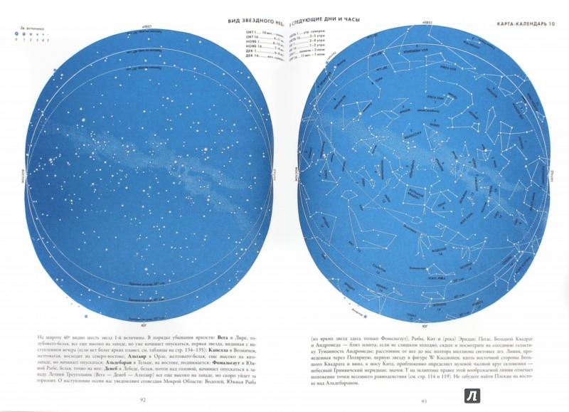 Иллюстрация 1 из 24 для Звезды. Новые очертания старых созвездий - Ханс Рей | Лабиринт - книги. Источник: Лабиринт