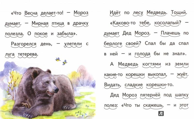 Иллюстрация 1 из 10 для Заяц, Косач, Медведь и Весна - Виталий Бианки | Лабиринт - книги. Источник: Лабиринт