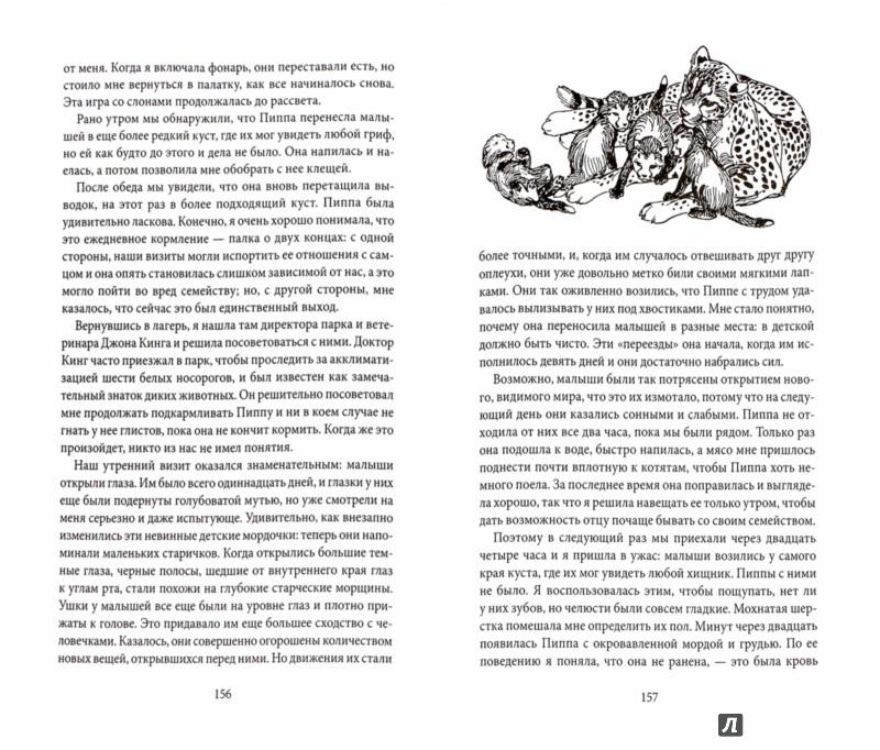 Иллюстрация 1 из 21 для Пиппа, или пятнистый сфинкс - Джой Адамсон   Лабиринт - книги. Источник: Лабиринт