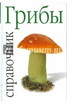 Грибы левашева е ред все о грибах рецепты виды советы