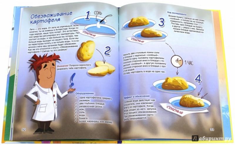 Иллюстрация 1 из 8 для Веселые научные опыты. Увлекательные эксперименты с растениями и солнечным светом - Егор Белько   Лабиринт - книги. Источник: Лабиринт