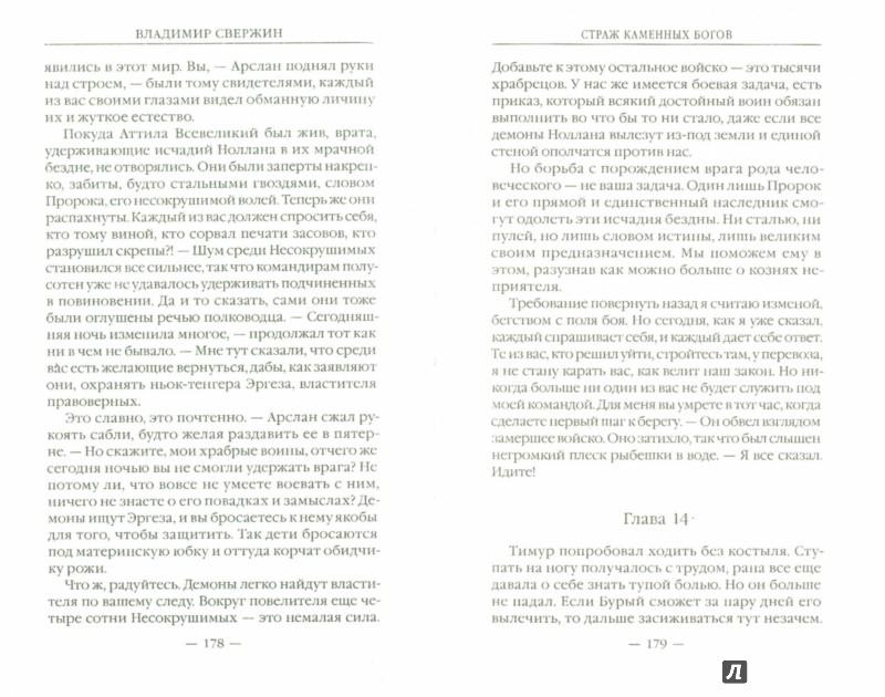 Иллюстрация 1 из 14 для Страж Каменных Богов - Владимир Свержин | Лабиринт - книги. Источник: Лабиринт