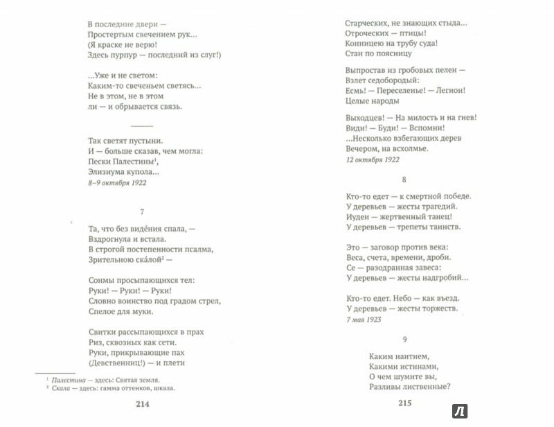 Иллюстрация 1 из 31 для Стихотворения и поэмы - Марина Цветаева | Лабиринт - книги. Источник: Лабиринт