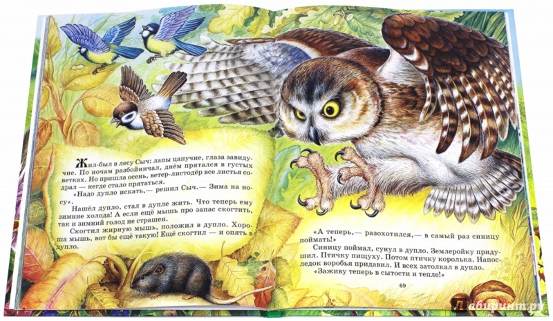 Иллюстрация 1 из 41 для Родная природа. Сказки и рассказы о родной природе - Бианки, Сладков, Шим | Лабиринт - книги. Источник: Лабиринт