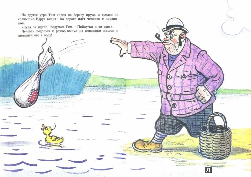 Иллюстрация 1 из 24 для Знаменитый утенок Тим - Энид Блайтон | Лабиринт - книги. Источник: Лабиринт