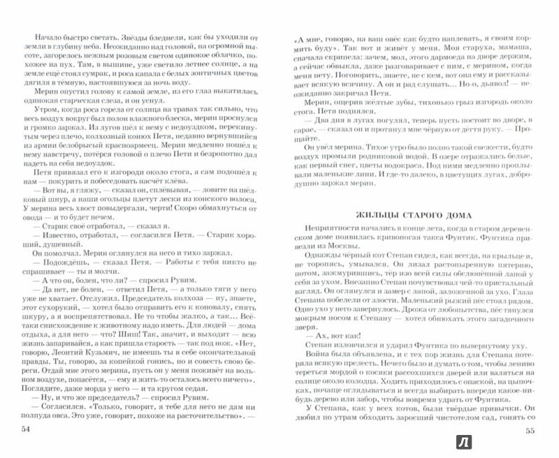 Иллюстрация 1 из 7 для Стальное колечко - Константин Паустовский | Лабиринт - книги. Источник: Лабиринт