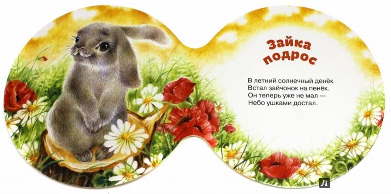 Иллюстрация 1 из 11 для Солнечные дольки - Ринат Курмашев | Лабиринт - книги. Источник: Лабиринт