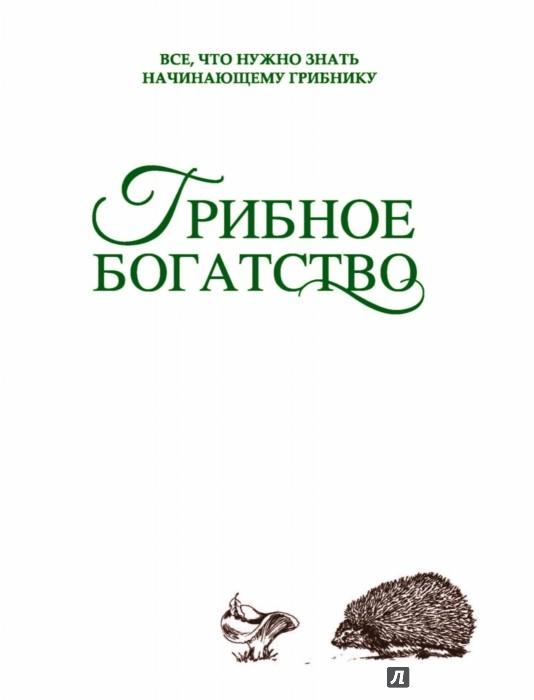 Иллюстрация 1 из 33 для Грибное богатство. Все, что нужно знать начинающему грибнику - Татьяна Ильина | Лабиринт - книги. Источник: Лабиринт