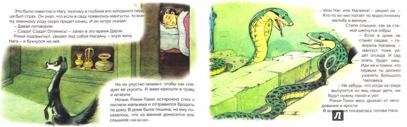 Иллюстрация 1 из 16 для Рикки-Тикки-Тави - Редьярд Киплинг | Лабиринт - книги. Источник: Лабиринт
