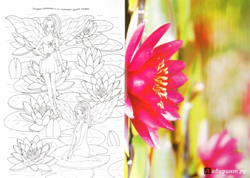 Иллюстрация 1 из 8 для Цветы и бабочки | Лабиринт - книги. Источник: Лабиринт